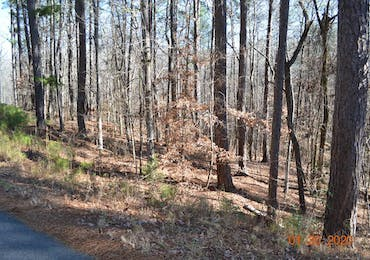 0 Pine Drive - Pine Mountain, Georgia 31822