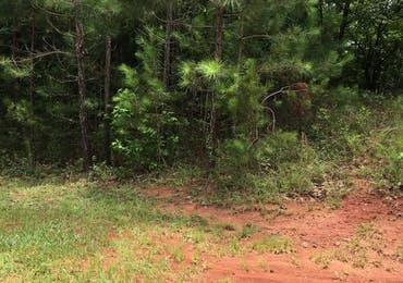 Lot 121 Flagstone Way - Fortson, Georgia 31808