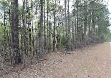 Lot 44 Lee Road 0965 - Valley, Alabama 36854