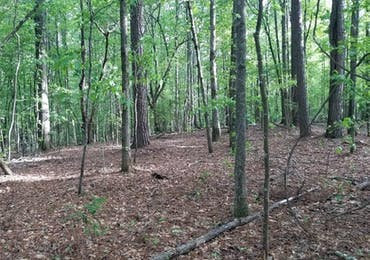 Lot 155 Piedmont Lake Drive - Pine Mountain, Georgia 31822