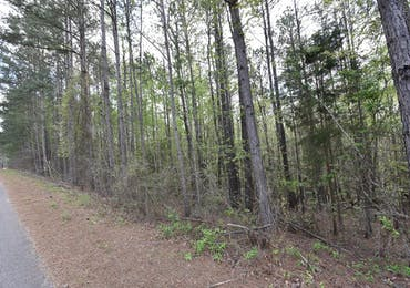 Lot 42 Lee Road 0965 - Valley, Alabama 36854