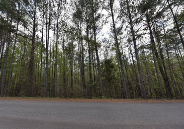 Lot 41 Lee Road 0965 - Valley, Alabama 36854