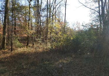 Lot 12 Deer Ridge Drive - Hamilton, Georgia 31811