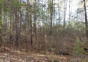 Lot 10 Deer Ridge Drive - Hamilton, Georgia 31811