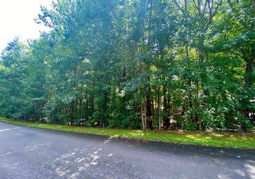 Lot 27 Buckeye Loop North - Midland, Georgia 31820